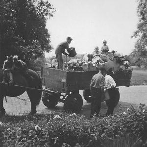 eldersjaap-ca1960-vuilis-ldw-1